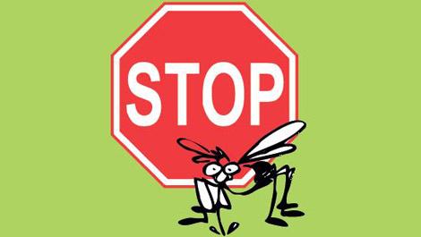 stop_zanzara
